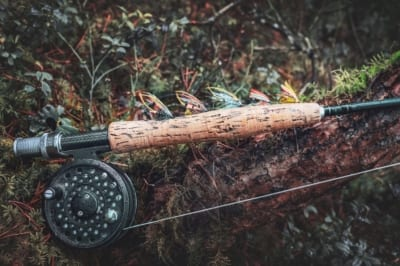 A freshly set up fly-rod rests upon the moss bed of an overhanging tree branch.